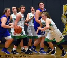 Blue.Ridge.Hiwassee.basketball.V.girls.LSMC (37)