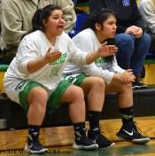 Blue.Ridge.Hiwassee.basketball.V.girls.LSMC (5)