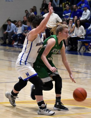 Highlands.Blue.Ridge.basketball.girls.V.snr.night (4)