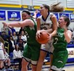Highlands.Blue.Ridge.basketball.girls.V.snr.night (63)