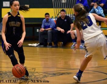 Highlands.Hiwassee.basketball.JV.girls.LSMC (17)