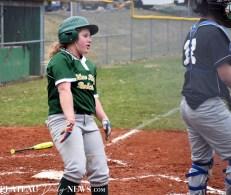 Blue.Ridge.Smoky.Mountain.baseball.ms (1)