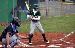 Blue.Ridge.Smoky.Mountain.baseball.ms (12)