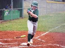 Blue.Ridge.Smoky.Mountain.baseball.ms (33)