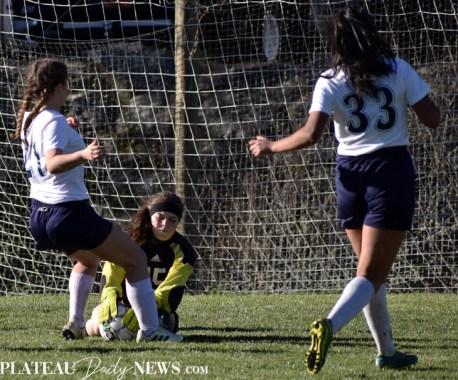 Blue.Ridge.TriCounty.Soccer.V (21)