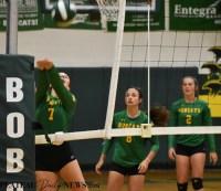 Blue.Ridge.Haywood.Volleyball (17)