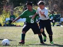 Blue.Ridge.Fairview.Soccer (3)