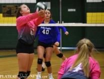 Blue.Ridge.Hiwassee.Volleyball (6)