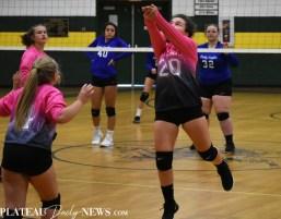 Blue.Ridge.Hiwassee.Volleyball (7)