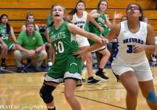 Blue.Ridge.Basketball (9)