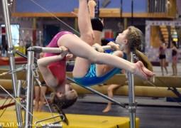 Gymnastics (29)