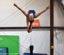 Gymnastics (7)