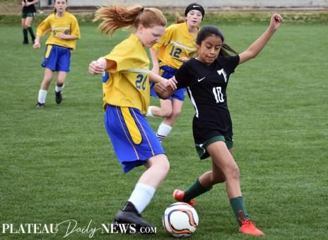 Highlands.Soccer (32)