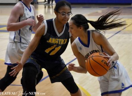 Langtree.Basketball (8)