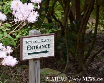 Botanical.Garden (5)