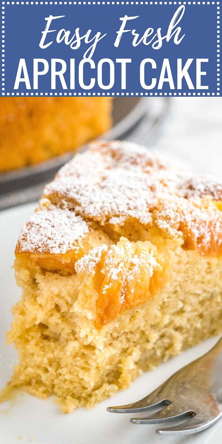 Apricot Cake Recipe With Fresh Apricots Plated Cravings