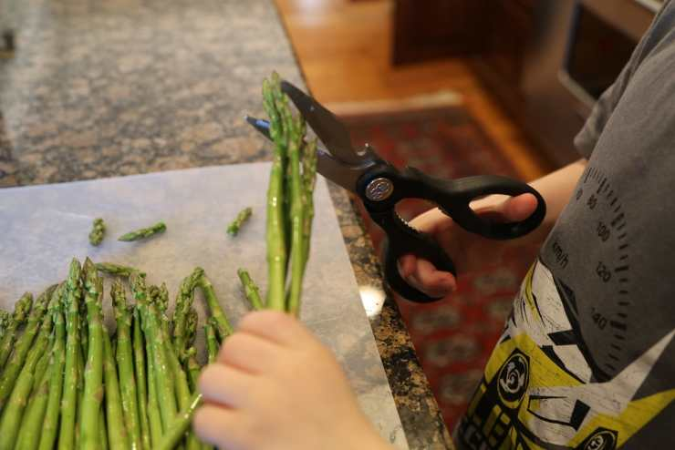 Child chopping asparagus with kitchen shears