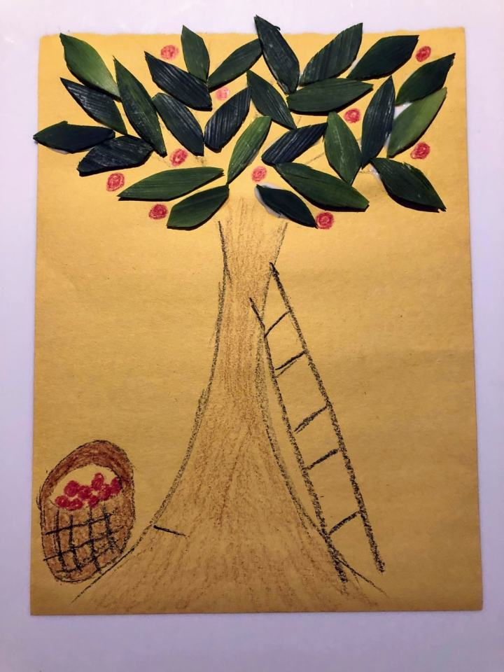 Drawing of an apple tree with a basket of apples and ladder on yellow paper, with leek food scraps as the tree leaves