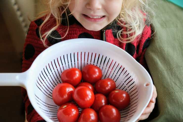 child holding tomatoes in strainer