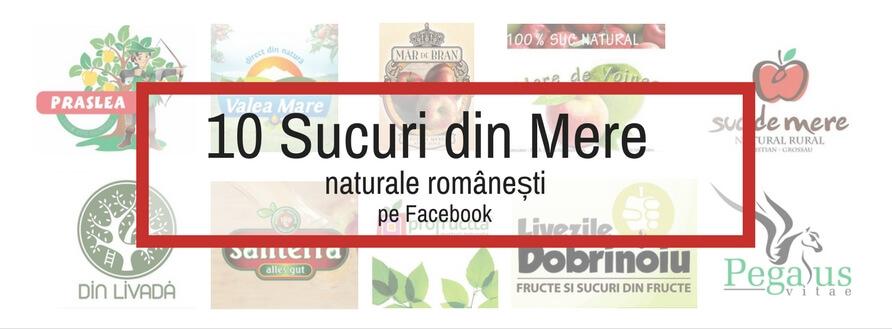 10+ Sucuri din Mere Naturale Romanesti pe Facebook