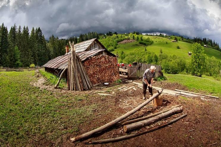 La spart lemnele - copyright Sorin Onisor
