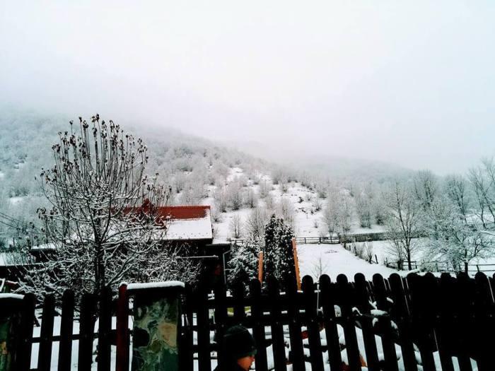Camara cu Delicatese, bijuterii culinare din Gura Raului, Marginimea Sibiului (8)