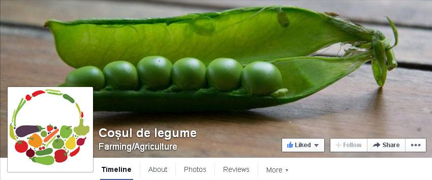 Cosul de legume