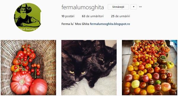 Ferma lu Mos Ghita Instagram