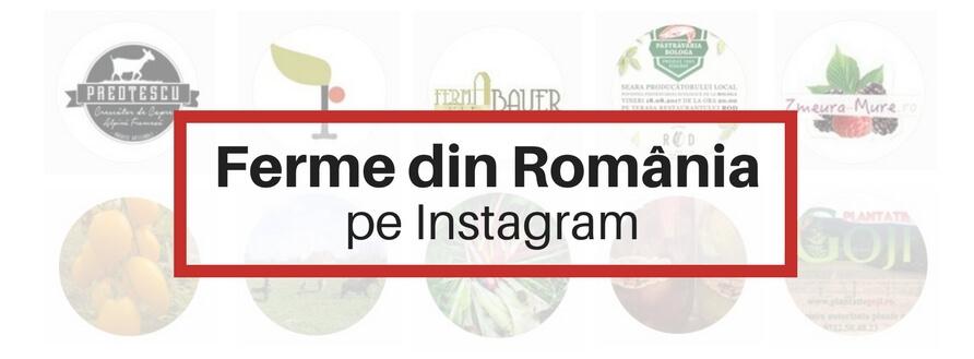 Ferme din România pe Instagram