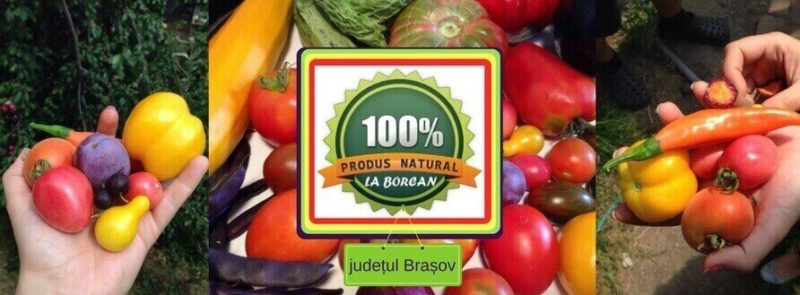 La Borcan județul Brașov, Abonament legume Brașov