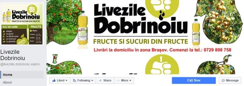 livezile-dobrinoiu
