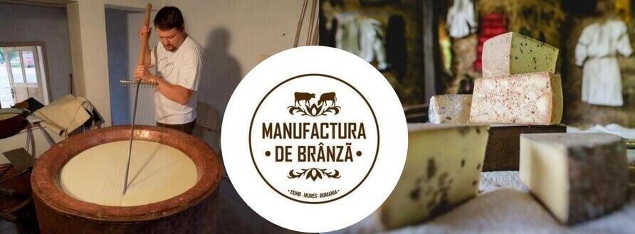 Manufactura de Brânză – brânză maturată în Mureș
