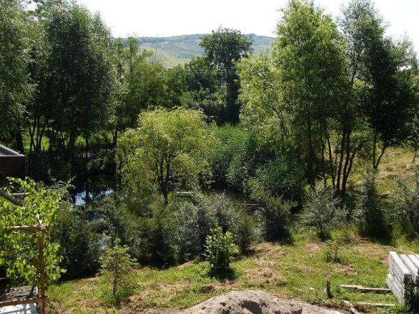poeferma-ferma-din-localitatea-bucecea-judetul-botosani-18