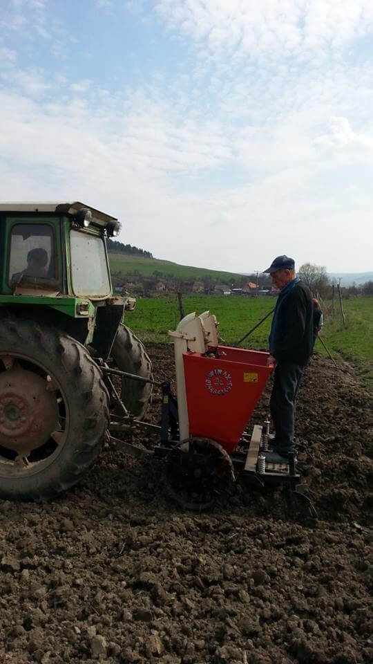 Pregatirea terenului la Ferma ecologica Topa (2)
