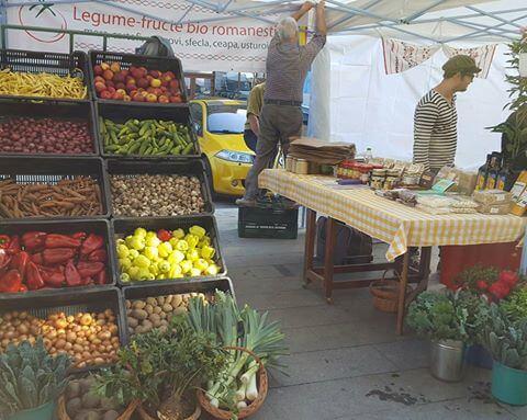 Tomatina, cooperativa agricola din judetul Ilfov gradina cu aplicatie livrare mancare, comanda mancare Bucuresti sau livrare mancare Bucuresti (10)