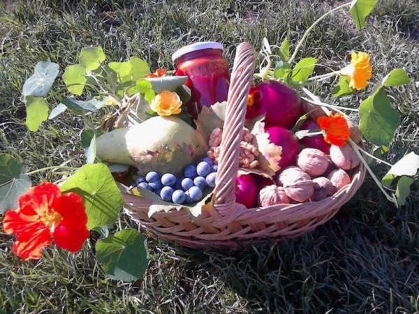 Coş cu fructe şi conduraşi