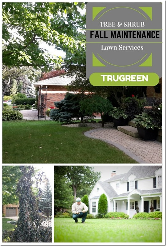 Gentil Trugreen Corporate Office. The Forest City And Taking Care Of Trees  Sponsored By Trugreen Ad .