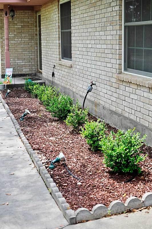 diy landscaping newbies monica