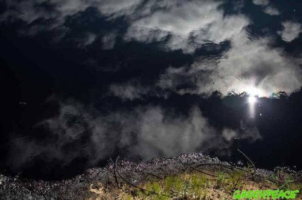 Oil pollution in Komi Photo: Greenpeace