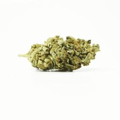 Lemon Kush (Indica) Buy Online Canada