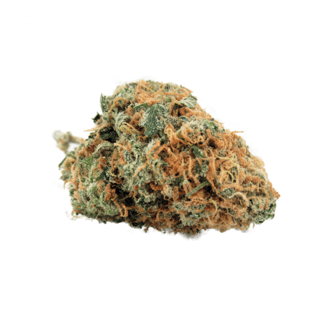 UK Cheese (Hybrid) Buy Online Canada
