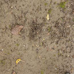 dirt-2