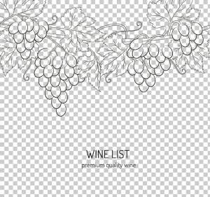 wine-drawing-download-grape-hand-painted-grapes