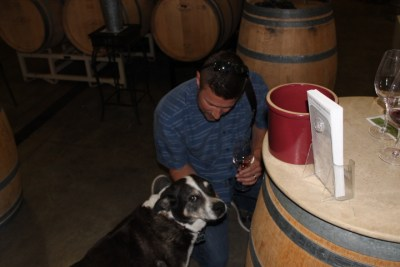No winery is complete without a dog as the official mascot!