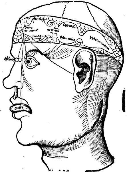 Descartes and the Pineal Gland (Stanford Encyclopedia of