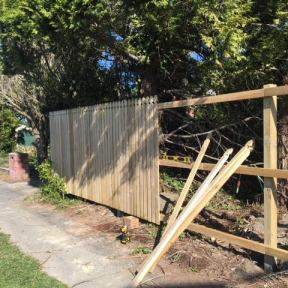 3) New (Gothic style) Fence Build