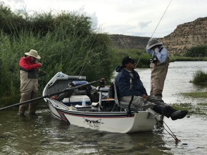 San Juan Fly Fishing