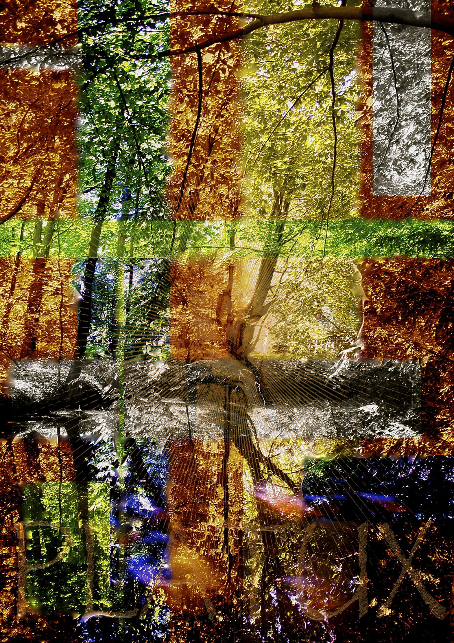 4 Seasons Platux Modern Art Fotokunst