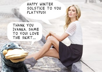 Winter Solstice Ivanka
