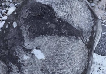 Two years later, where is the 92-pound Petoskey stone?